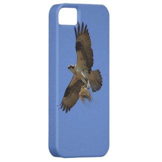飛んでいるなミサゴ(魚タカ)のiPhoneの場合 iPhone SE/5/5s ケース