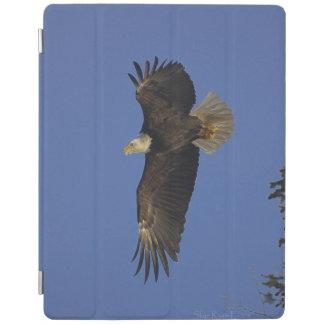 飛んでいるな白頭鷲及び空の野性生物の写真 iPadスマートカバー