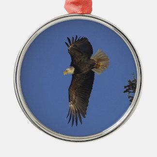 飛んでいるな白頭鷲野性生物サポータ芸術 メタルオーナメント