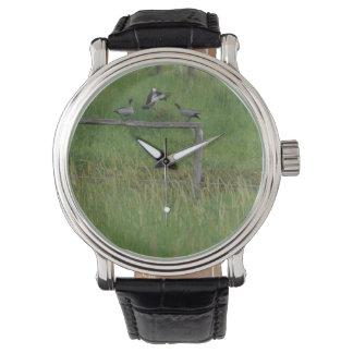 飛行中に塀のポストオーストラリアで上陸しているアヒル 腕時計