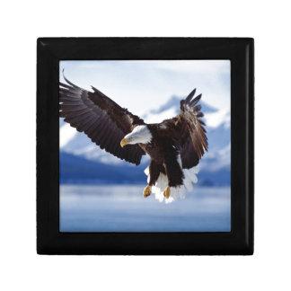 飛行中のアラスカのワシ ギフトボックス