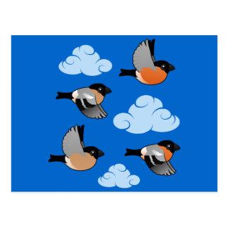 飛行中の欧亜のBullfinches ポストカード