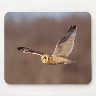 飛行中の短い耳付つきのフクロウ マウスパッド