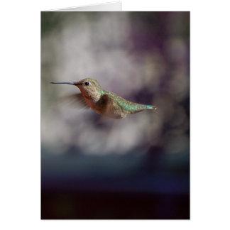 飛行中ハチドリ グリーティングカード