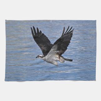 飛魚座のワシのミサゴの自然の写真 キッチンタオル