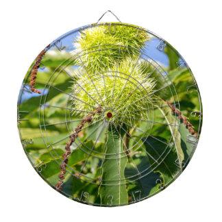 食用の栗の木の緑の殻そして葉 ダーツボード