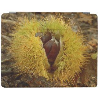 食用の栗のiPadカバー iPadスマートカバー