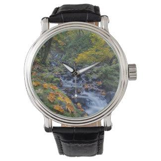 飢餓の入り江の滝に沿う秋色 腕時計