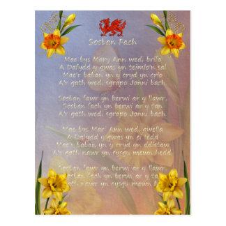 飾られるSospan Fachのラッパスイセン ポストカード