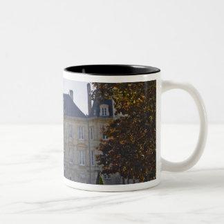 館のPichon Longuevilleの男爵および池 ツートーンマグカップ