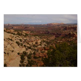 首の春の道からのCanyonlandsの眺め カード