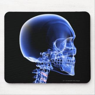首の骨のX線の上で閉めて下さい マウスパッド