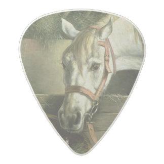 馬および子ネコ1890年 アセタール ギターピック