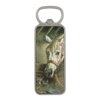 馬および子ネコ1890年 マグネット栓抜き