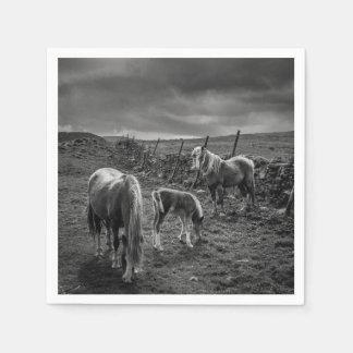 馬および子馬の紙ナプキン スタンダードカクテルナプキン