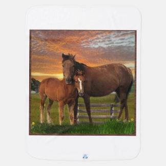 馬およびponey ベビー ブランケット
