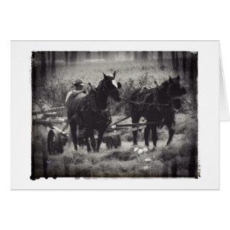 馬が付いている干し草を白黒にします カード