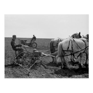 馬が引くトウモロコシPlanter 1940年 ポストカード