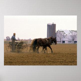 馬が引く種プランターを使用しているアマン派の農家 ポスター