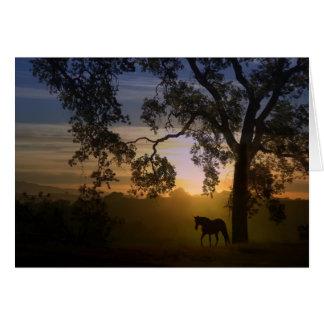 馬のオークの木および日没の損失のための悔やみや弔慰 カード