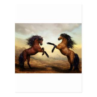 馬のギフト ポストカード