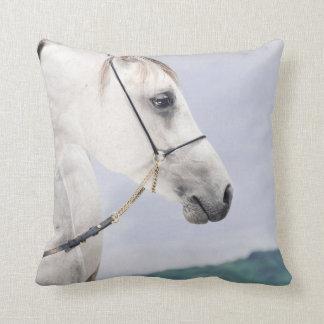 馬のコレクション。 アラビア クッション