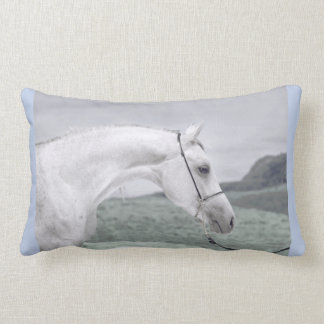 馬のコレクション。 アラビア ランバークッション