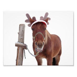 馬のシカ-クリスマスの馬-おもしろいな馬 フォトプリント