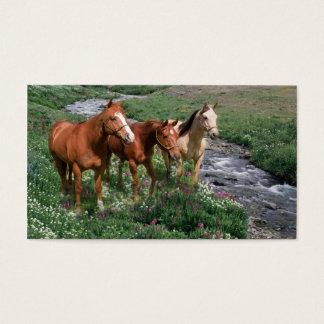 馬のトリオの名刺 名刺