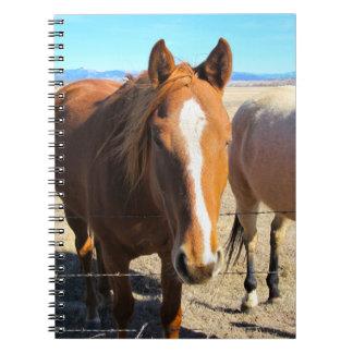馬のノート ノートブック
