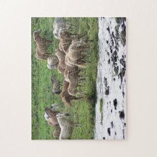 馬のパズルを牧草を食べること ジグソーパズル