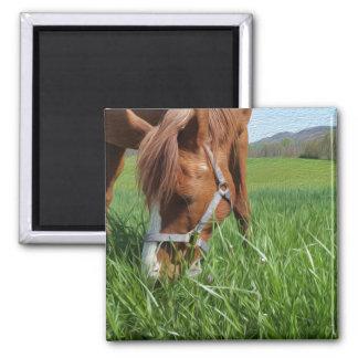 馬のファインアートの磁石を牧草を食べること マグネット