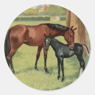 馬のロバの子馬の乗馬のヴィンテージのイメージ ラウンドシール