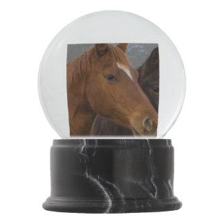 馬の三重項 スノーグローブ