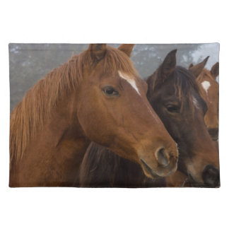 馬の三重項 ランチョンマット