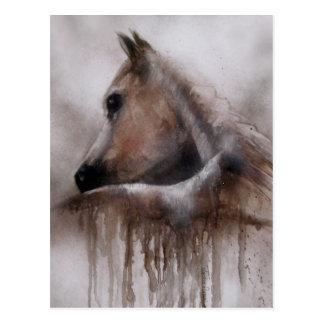 馬の内気な動物の芸術 ポストカード