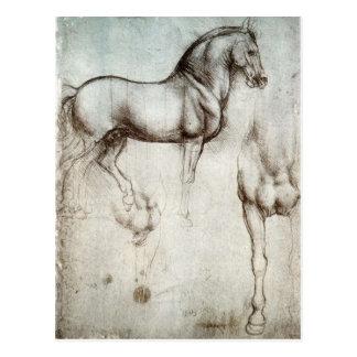 馬の勉強-レオナルド・ダ・ヴィンチ ポストカード