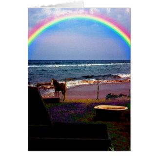 馬の土地の海の虹の挨拶状 カード