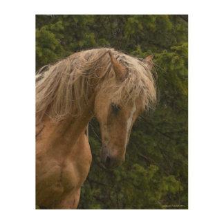"""""""馬の年""""の祈りの言葉のPalominoのペンキ ウッドウォールアート"""
