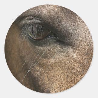 馬の目の光沢のある円形のステッカー ラウンドシール