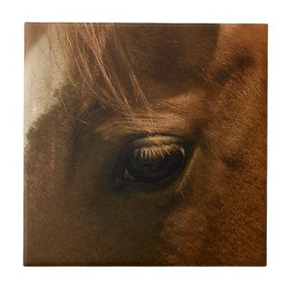 馬の目 タイル