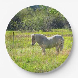 馬の紙皿 ペーパープレート