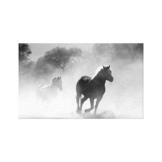 馬の群れ白黒| キャンバスプリント