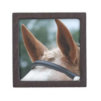 馬の耳 ギフトボックス