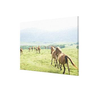 馬の走ること キャンバスプリント