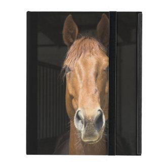 馬の顔の写真 iPad ケース