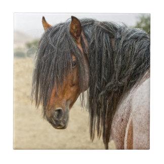 馬の鬣 タイル
