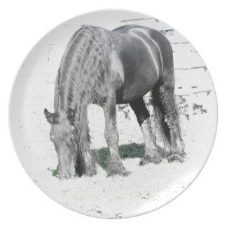 馬のFriesianの種馬動物自然の白黒 プレート