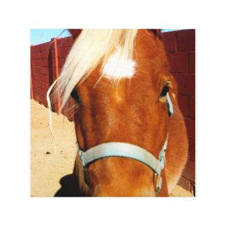 馬はキャンバスの女の子のBFFです キャンバスプリント