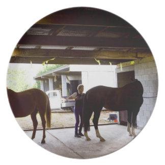 馬を守っている成長した女性 プレート